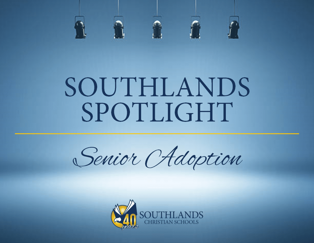 Southlands Spotlight: Senior Adoption